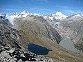 Oberaar and Unteraar Glaciers.jpg