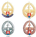 Odznak technikov protivzdusnej obrany Vzdusnych sil Ozbrojenych sil Slovenskej republiky.jpg