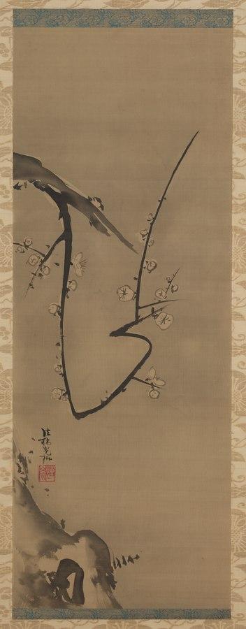 Prunus (1983.10)