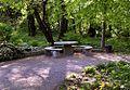 Ogród Botaniczny - miejsce do odpoczynku fot BMaliszewska.jpg