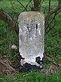Old Milestone - geograph.org.uk - 1778190.jpg