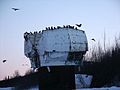 Old NIKE Missile radar dome with ravens.JPG