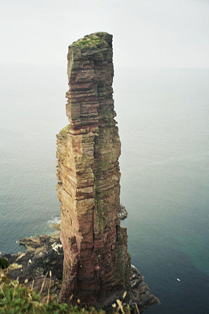 The Old Man of Hoy at the Island Hoy (Orkney).