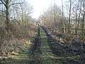 Old railway trackbed near Ashley - geograph.org.uk - 695338.jpg