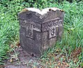 Old stone milepost on the A35 - geograph.org.uk - 427757.jpg