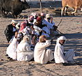 Oman bullfighting (3).jpg