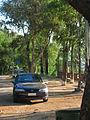 Opel Vectra 1997 (12725502165).jpg