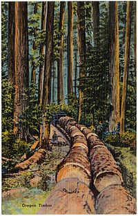 Oregon Timber (75492).jpg
