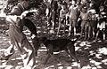 Otroci opazujejo dreserja psov kinološkega društva med delom 1956.jpg