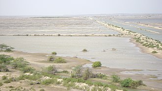 Vedaranyam - Salt pans – one of the major manufacturing units in Vedarnyam – Kodiyakarai stretch