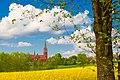 PL-730563 Kościół Matki Bożej Szkaplerznej w Brzeźcach.jpg