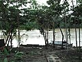 "PORTO DA FAZENDA MONTE SINAI - 1 - South Atalaia do Norte and Tabatinga, on the banks of the river Itaquaí NEXT to a Kanamari village and people not contacted."" - panoramio.jpg"