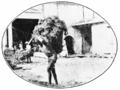 PSM V70 D224 Half naked laborers.png