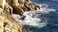 Palamós (Costa Brava) - panoramio (1).jpg