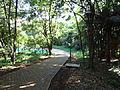 Parque Vitória - Cascavel 01.JPG