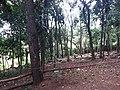 Parque da Cidade - Jundiaí - panoramio (100).jpg