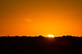 Partial Solar Eclipse - October 23, 2014 (15612709525).jpg