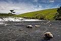 Passo da Ilha - Rio Tainhas 05.jpg