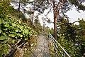Path to Naisvuori.jpg