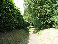 Path to St Agathas Church - geograph.org.uk - 1374550.jpg