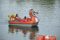 Pedalo - Sukhna Lake - Chandigarh 2016-08-07 8934.JPG