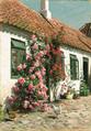 Peder Mønsted - Byhus i Sæby med blomstrende roser - 1916.png