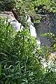 Perspektiven des Parque nacional Iguazú 14 (21494763423).jpg