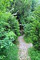 Petit Trianon - Vers la grotte.jpg