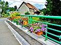 Petitefontaine. Pont sur la Saint Nicolas. (2).jpg
