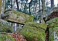 Pfaffenheim. Table des druides. (1). 2013-12-11.jpg