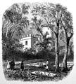 Pferdefriedhof.jpg