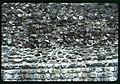 Pfyn. Dettaglio di un muro romano.jpg