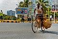 Phoenix bicycle.jpg
