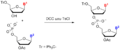 Phophodiester oligonucleotide synthesis.png