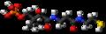 Phosphopantetheine 3D ball.png