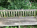 Photograph of a bench (OpenBenches 577).jpg