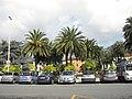 Piazza IV Novembre - Massa - panoramio.jpg