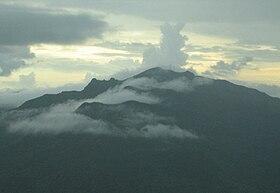 Pico El Yunque.jpg