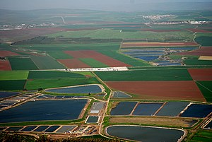Jezreel Valley - Agriculture in the Jezreel Valley