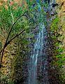 PikiWiki Israel 49207 Tourism in Israel.jpg