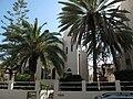 PikiWiki Israel 993 Bialik House בית ביאליק.JPG