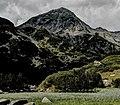 Pirin-2014-MalakVihren02.jpg