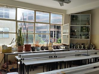 Education in Ethiopia - Plants in a High School Biology Laboratory, Addis Ababa