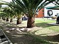 Plazoleta Central Uptc Sogamoso 2.jpg