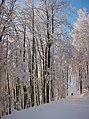 Po ceste na Hostinec - panoramio.jpg