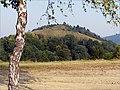Pohľad na Drienkový hŕbok II - panoramio.jpg