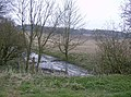 Pond near Farleigh Wallop - geograph.org.uk - 381471.jpg