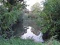 Pond on Okehurst Road - geograph.org.uk - 258273.jpg