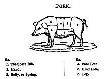 Diagram of a pig, showing the location of the cuts of pork
