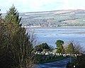 Port Glasgow Cemetery - geograph.org.uk - 351539.jpg